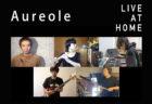 LIVE: Aureole